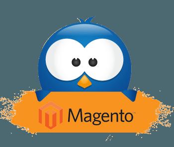 Hosting Magento