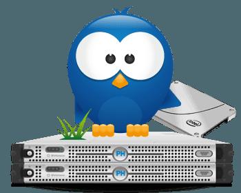 Dedicated Server SSD