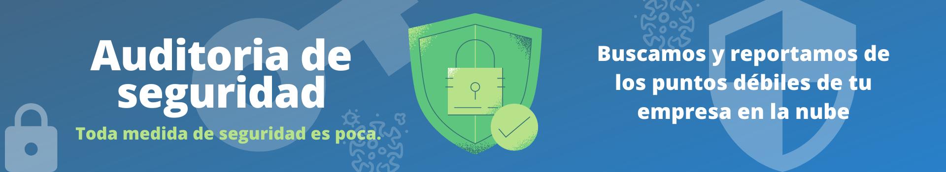 Audit Security